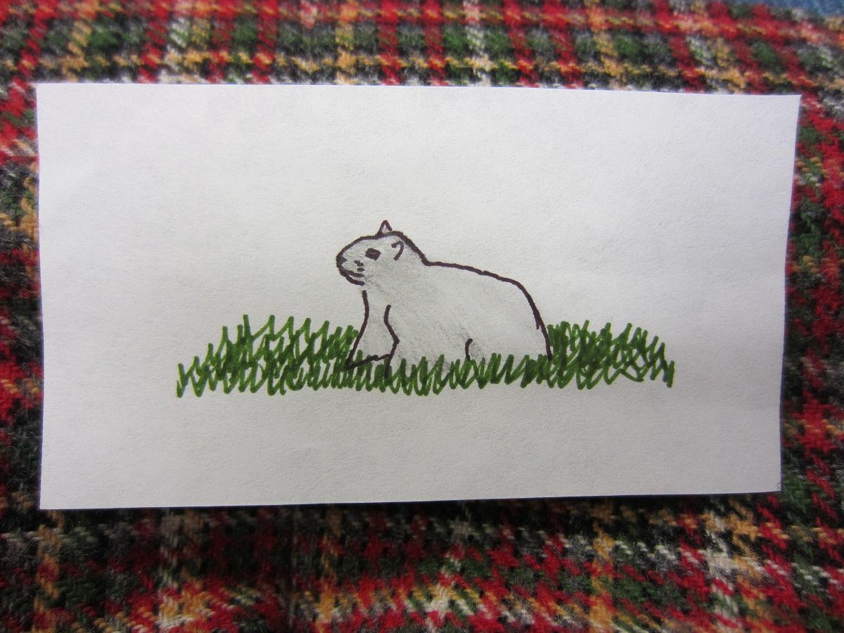 groundhog!